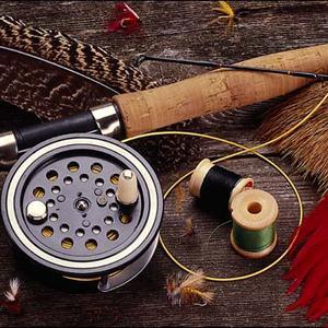 Охотничьи и рыболовные магазины Порхова